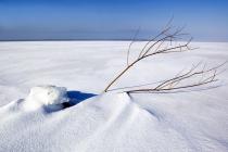winter011
