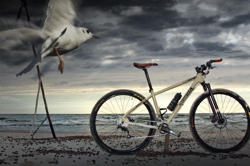 albatrosas